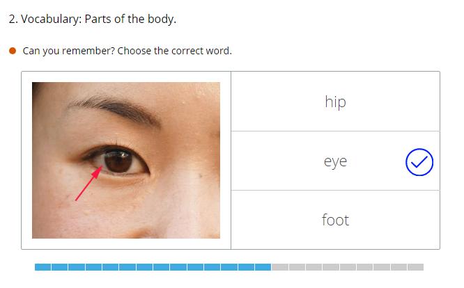 flash card image of eye